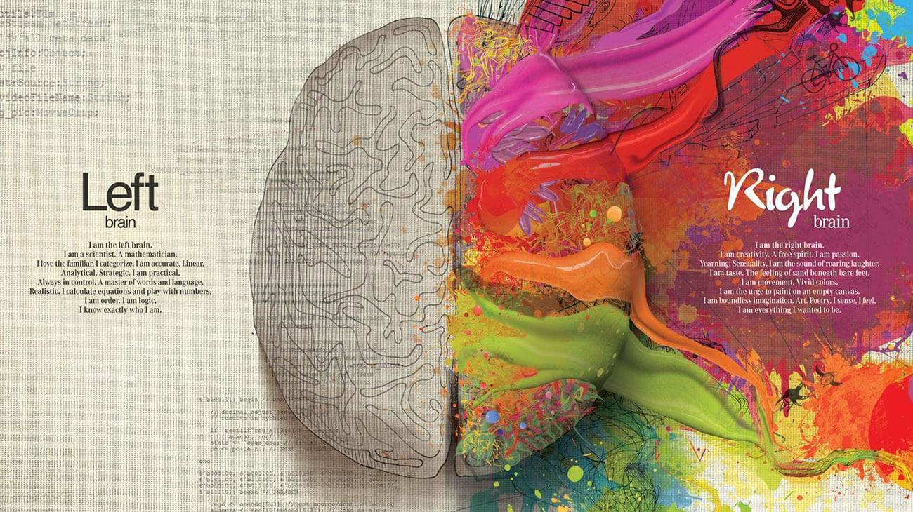 Hiểu về não của bạn